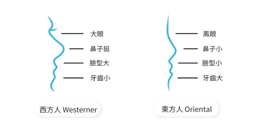 鐔豬牙齒矯正 東方人與西方人的不同