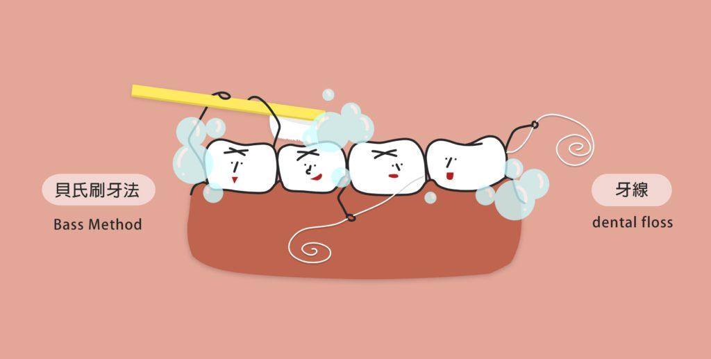 正確的牙齒清潔習慣,讓你遠離牙周病